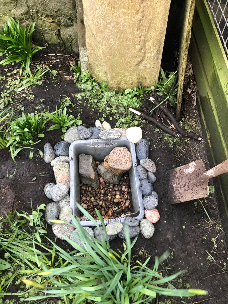 Making a pond in the garden to welcome frogs, and spring.